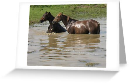 """""""Horses with Attitude no. 6,  """"Ya Gettin' On My Last Nerve!'""""... prints and products by © Bob Hall"""