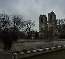 Notre Dame and the River Seine - Paris by AshyiaFrancis
