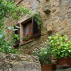 Secluded Window by CreativeUrge