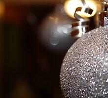 Silver Sparkles by kplata