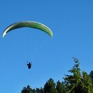 Paraglider in the Tetons #1 by JenLand