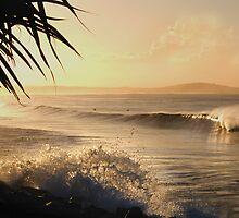 Sunset at Main Beach by Robert Munden