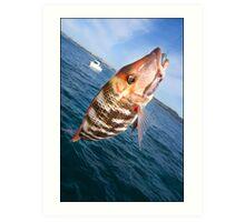 fish on hook Art Print