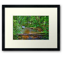 Crystal River-2 Framed Print