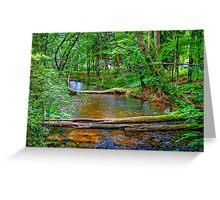 Crystal River-2 Greeting Card