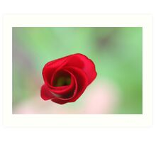 The end of a great artwork - red whirlwind in a green paradise Art Print