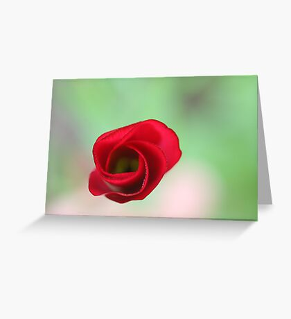 The end of a great artwork - red whirlwind in a green paradise Greeting Card