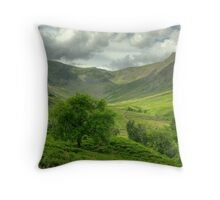 The Valley Of The Eagle Throw Pillow