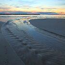 Lifes a Beach!!!! by tinnieopener
