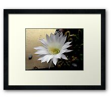 ©NS TT Flower IIIA Framed Print