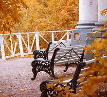 Autumn by cinema4design