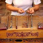 Chinese Musical Instrument by Maureen Clark
