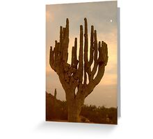 Cardon Cactus Greeting Card