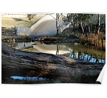 Fallen Tree at the Spillway Poster