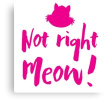 Not right MEOW! (not right now in cat talk) Canvas Print