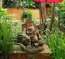 Thai Garden by Fiona Allan Photography