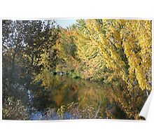 Boise River Reflection Poster