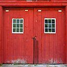 Bronson's Doors by Debbie Robbins