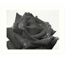Ruby Rose - 1 Art Print