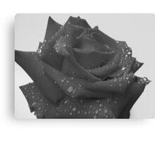Ruby Rose - 2 Canvas Print