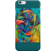 Spectra Pudge by Asra Rae iPhone Case/Skin