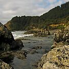 Rugged Coast by bicyclegirl