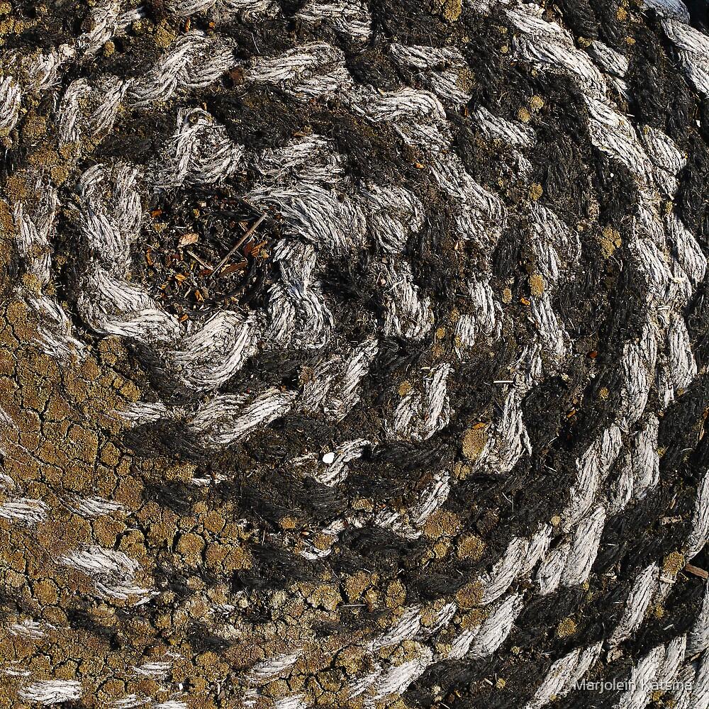Spiral fractal (1) by Marjolein Katsma