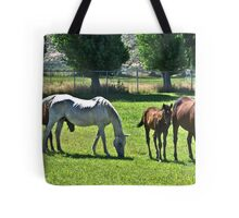 """"""" Spell Bound """" Tote Bag"""