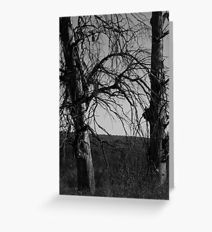 Desolate winter Greeting Card