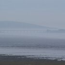 Birnbeck pier in the fog. by Livvy Young
