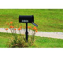 Got Mail Photographic Print
