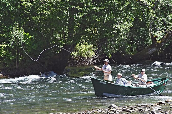 Fly fishing on the mckenzie river by chuck gardner for Mckenzie river fishing