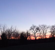 Grand Point Forest Preserve by k253