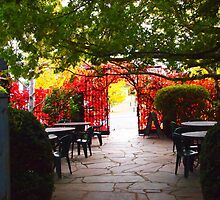 Malmsbury VIC - the colours of autumn by Margaret Morgan (Watkins)