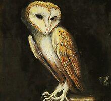 Barn Owl (Tyto alba) by TallabeenaArt