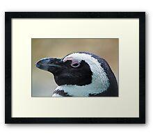 Penguin Get My Good Side Framed Print