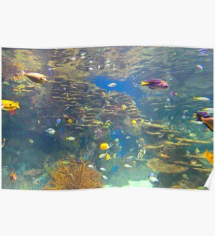 Tropical hidden aqua world Poster