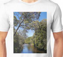 Hellyer River, Hellyer Gorge State Reserve, Tas, Australia Unisex T-Shirt