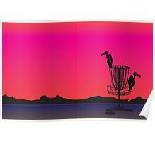 Disc Golf Birdie Poster