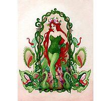 Art Nouveau Ivy Photographic Print