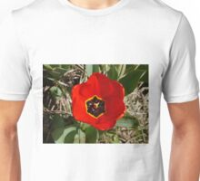 One red Tulip Unisex T-Shirt