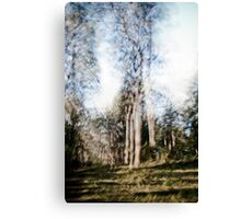 Multiple of one Canvas Print