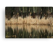 On a Rainy Morning at the Marsh Canvas Print