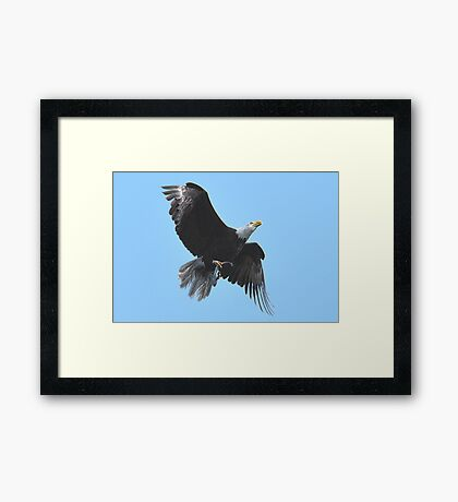 Home from the Hunt Framed Print