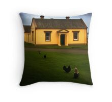 Engineers Office Throw Pillow