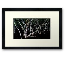 and the lighting radiates from within Framed Print