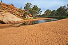 A Town Begins - Alice Springs Waterhole by mspfoto