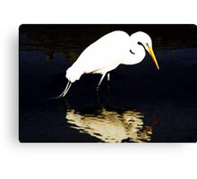 Mirror Mirror on the Wall Canvas Print