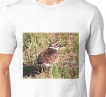 Killdeer (with call) Unisex T-Shirt