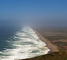 Point Reyes Seashore by mrthink